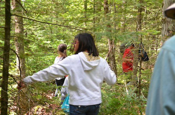 ENGAGE students in forest looking for cedar trees to harvest