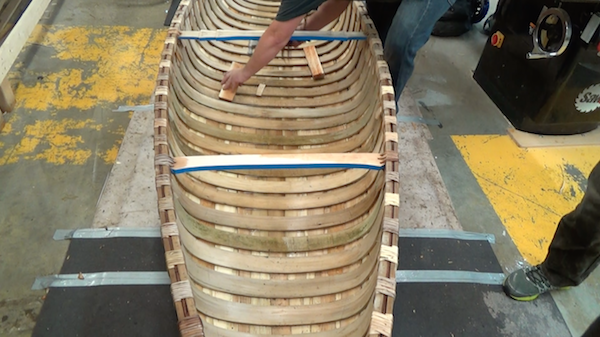 Tapping ribs in place. Image shows the alternation of light and dark lashings before the addition of a topwale.